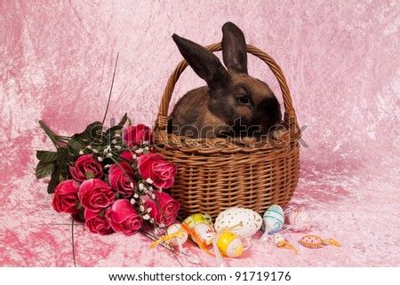 Easter bunny in basket with eggs on pink background - stock photo