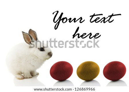 Easter Bunny with colored eggs, isolated on white with copy space - stock photo