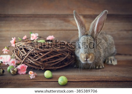 easter bunny  with easter eggs and a nest - stock photo