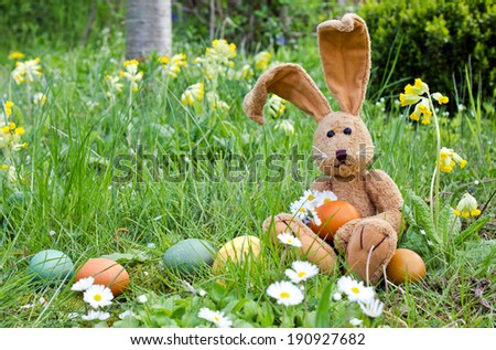 Easter bunny with easter eggs and daisies/easter bunny/easter - stock photo