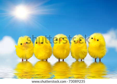easter chickens in the water against sky background - stock photo