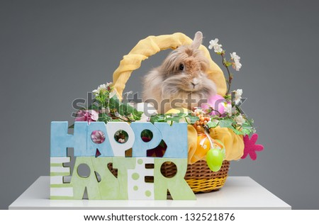 easter composition. happy easter sign and rabbit in easter basket isolated on gray background