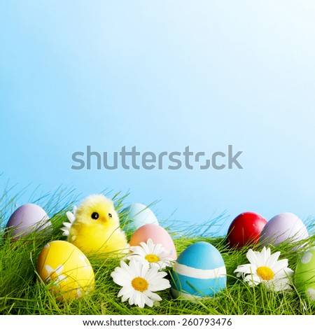 Easter composition with eggs and chicks on green meadow - stock photo