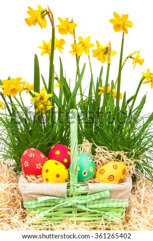 Easter decoration; Mini daffodils and bast basket with Easter eggs in wood wool - stock photo