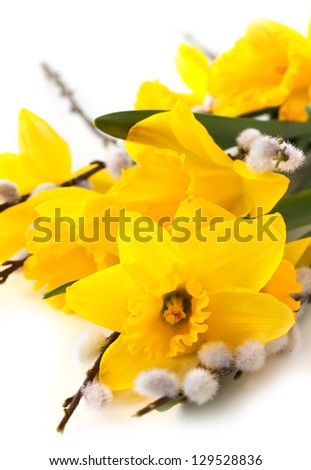 easter decoration with narcissus and pussy willows - stock photo