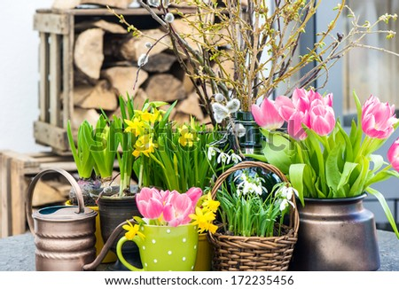 easter decoration with spring flowers. tulips, snowdrops and narcissus blooms. seasonal home interior - stock photo