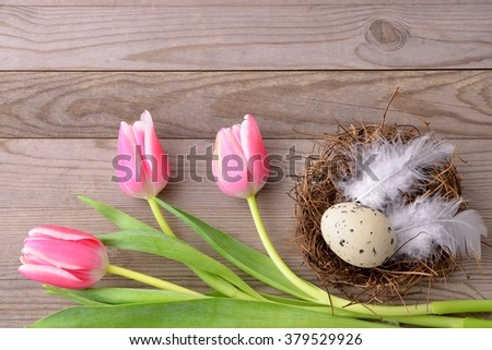 Easter. Easter background with easter eggs and tulips. Copy space, for easter text. Easter card, easter flower. Easter eggs for easter nest.  - stock photo