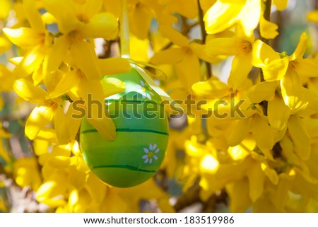 Easter egg hanging on a branch with yellow flowers