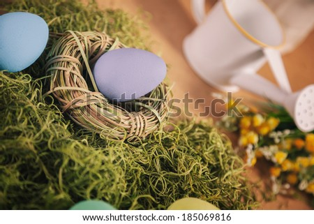 Easter egg in nest on the grass
