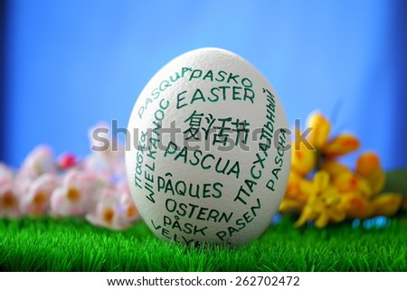 Easter egg on blue window background - stock photo