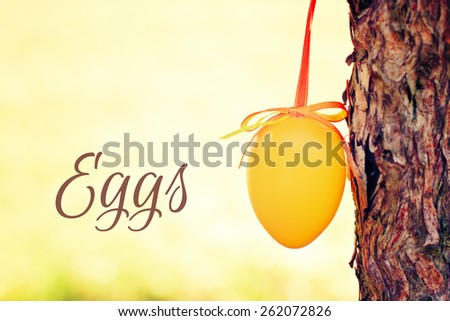 easter egg outdoor hanging on a bush - greeting card - stock photo
