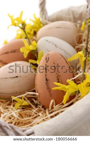 Easter eggs and branch of  forsythia - stock photo