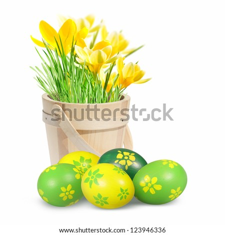 Easter eggs and crocuses on the white background. - stock photo