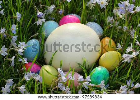 Easter Eggs circled around a large Ostrich egg amid violets. - stock photo