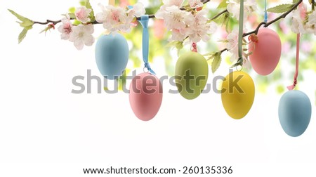 Easter eggs hanging on plum branch - stock photo