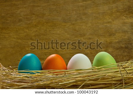 Easter eggs in a nest of different colors - stock photo