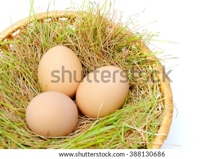 Easter eggs in basket on white background isolated.