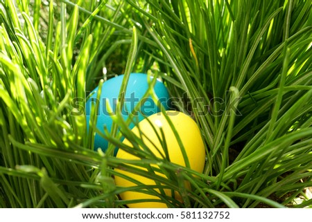 easter eggs in grass easter egg hunt easter background
