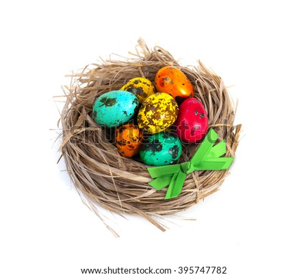 Easter eggs in nest on white bacground - stock photo