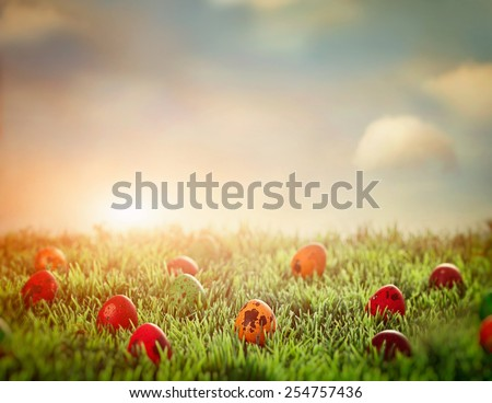 Easter eggs in spring grass. Easter hunt. Easter design background - stock photo