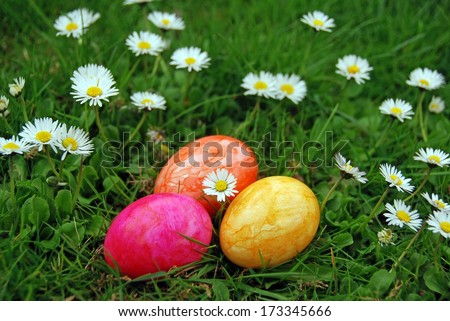 easter eggs in the grass with daisies - stock photo
