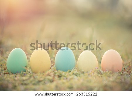 Easter eggs on green grass with dew drop in the morning. - stock photo