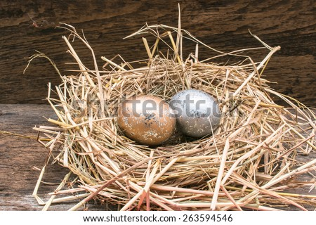 Easter eggs on the nest with wooden background