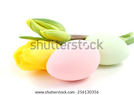 Easter eggs with tulip flowers isolated over a white background. - stock photo