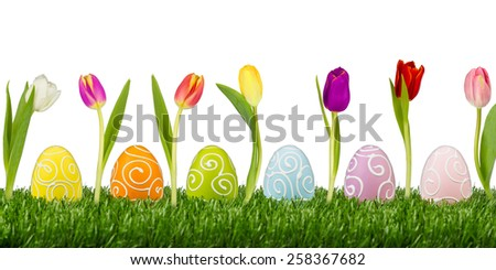 easter eggs with tulips on white background - stock photo