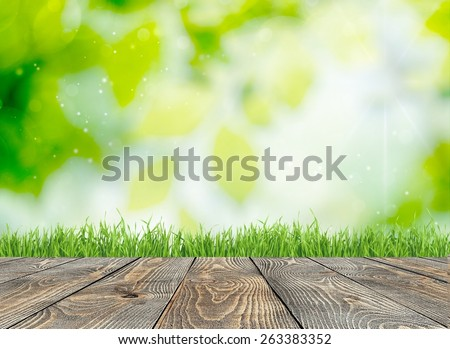 Easter. Green grass natural background with selective focus - stock photo