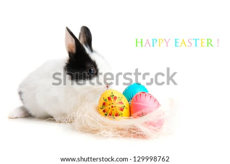 Easter greeting card with easter bunny and eggs in nest, isolated on white background - stock photo