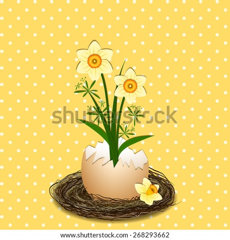 Easter Holiday Illustration Yellow Daffodil Flower on Polka Dot Background - stock photo