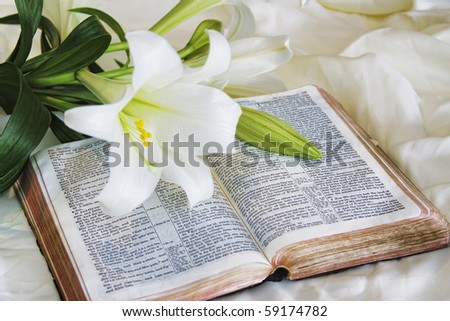 Easter Lily and Bible - stock photo