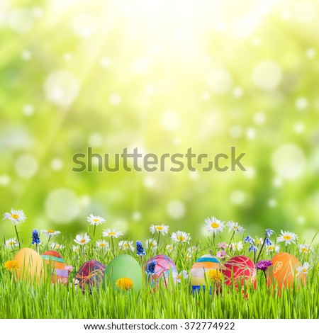 Easter nature holiday background with eggs and flowers