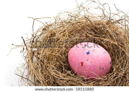 Easter pink egg on bird nest. - stock photo