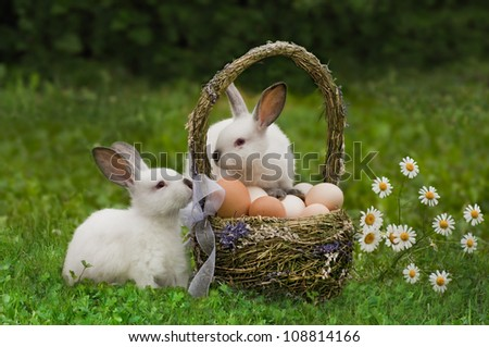 Easter. Rabbits near an easter basket with eggs. - stock photo