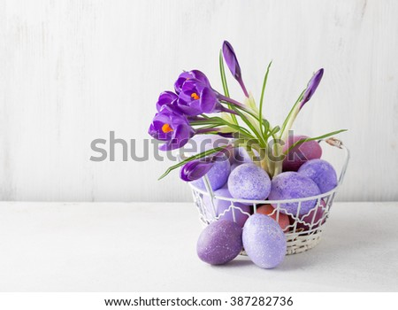 Easter still life with colored eggs and flowers (Crocus).  - stock photo