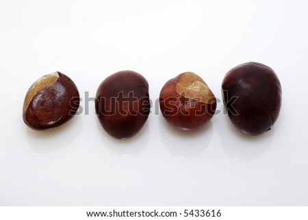 easy to isolate chestnuts