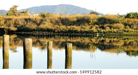 Ebbs & Flows at the Estuary. Tidal posts mark the rise and fall of the Tasman Sea as it mingles with the fresh water of the Waikanae River, Wellington, New Zealand. - stock photo