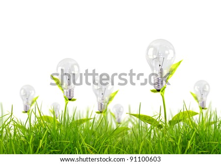 Eco concept - light bulb grow in the grass against white background - stock photo