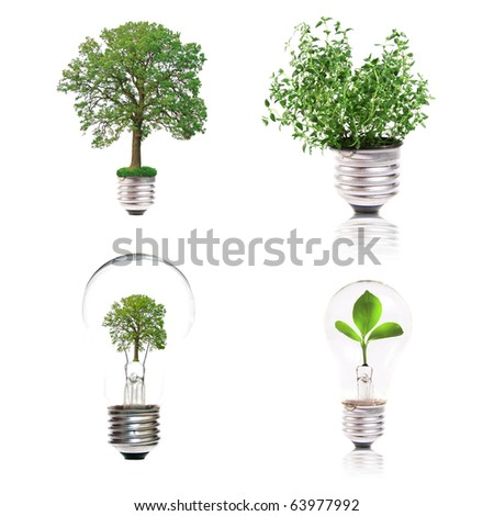 eco concept: variety of light bulbs with plant inside - stock photo