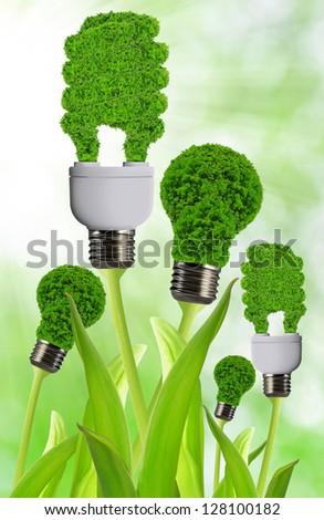 eco energy bulb - stock photo
