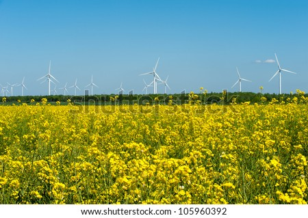 Eco farm of wind turbines close to rape field France Europe