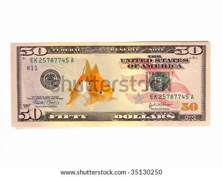 Eco-friendly Asset Cash Profit (isolated US $50 goldfish eco-friendly dollar bill) - stock photo