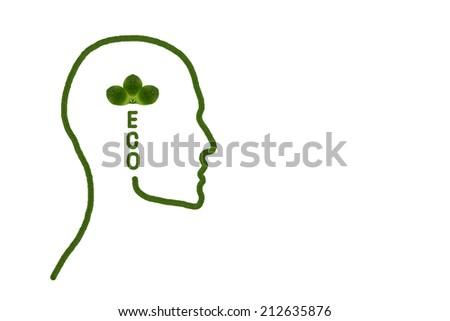 Eco idea form  leaf - stock photo