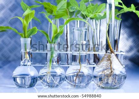 Eco laboratory - stock photo