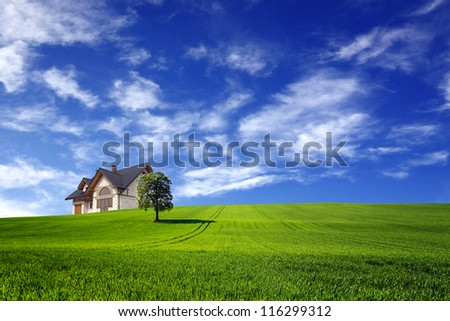 Eco landscape - stock photo