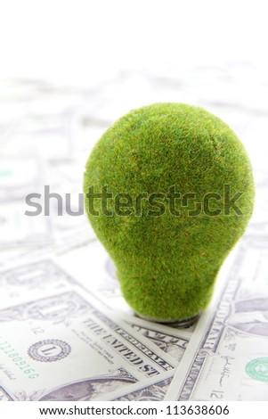 eco light bulb - stock photo