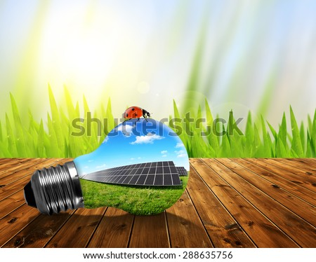 Eco light bulb on wooden board. Green energy concept. - stock photo