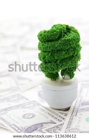 eco light bulb ,save money concept - stock photo